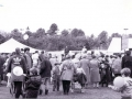 Thames Valley Alive in Sol Joel Park c1992